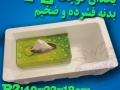 یخدانهای کوچک یوکا Yucca مدل پی  2
